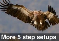 image of 5 step setup